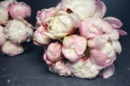 liebliche rosa-lachs Pfingstrosen als Mono-Brautstrauss