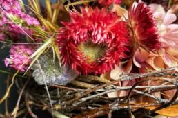 herbstliche Trockenblumen