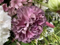 Blumendetail mit Spezialnelke