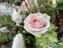 Rose im Detail mit natürlichen Begleitern