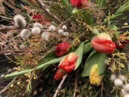 Wachsblumen ergänzt