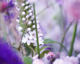 Riesige Blumendeko
