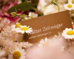 Deko von Walter Zellweger