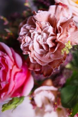 Rose und Nelke